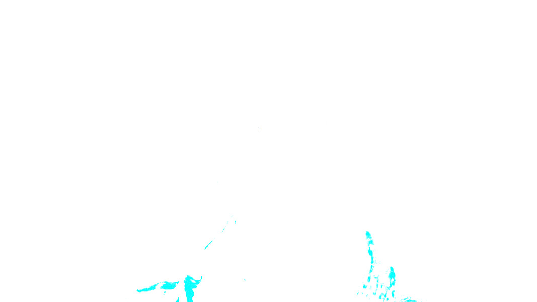 IMG_7371TT.jpg