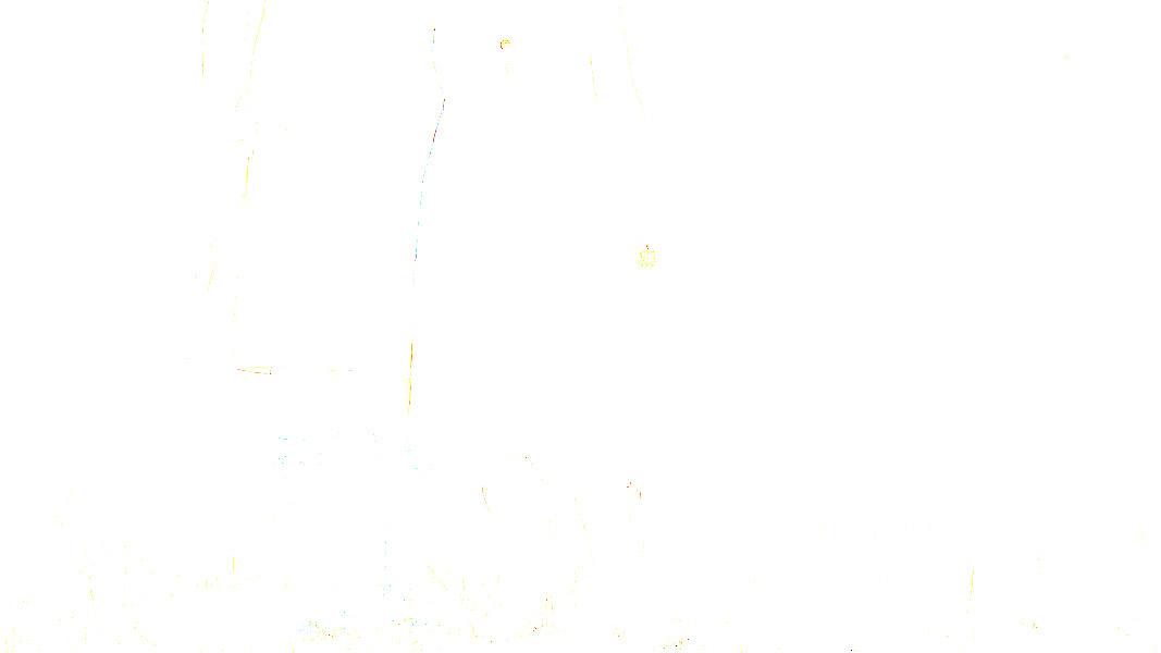 IMG_9377T22.jpg